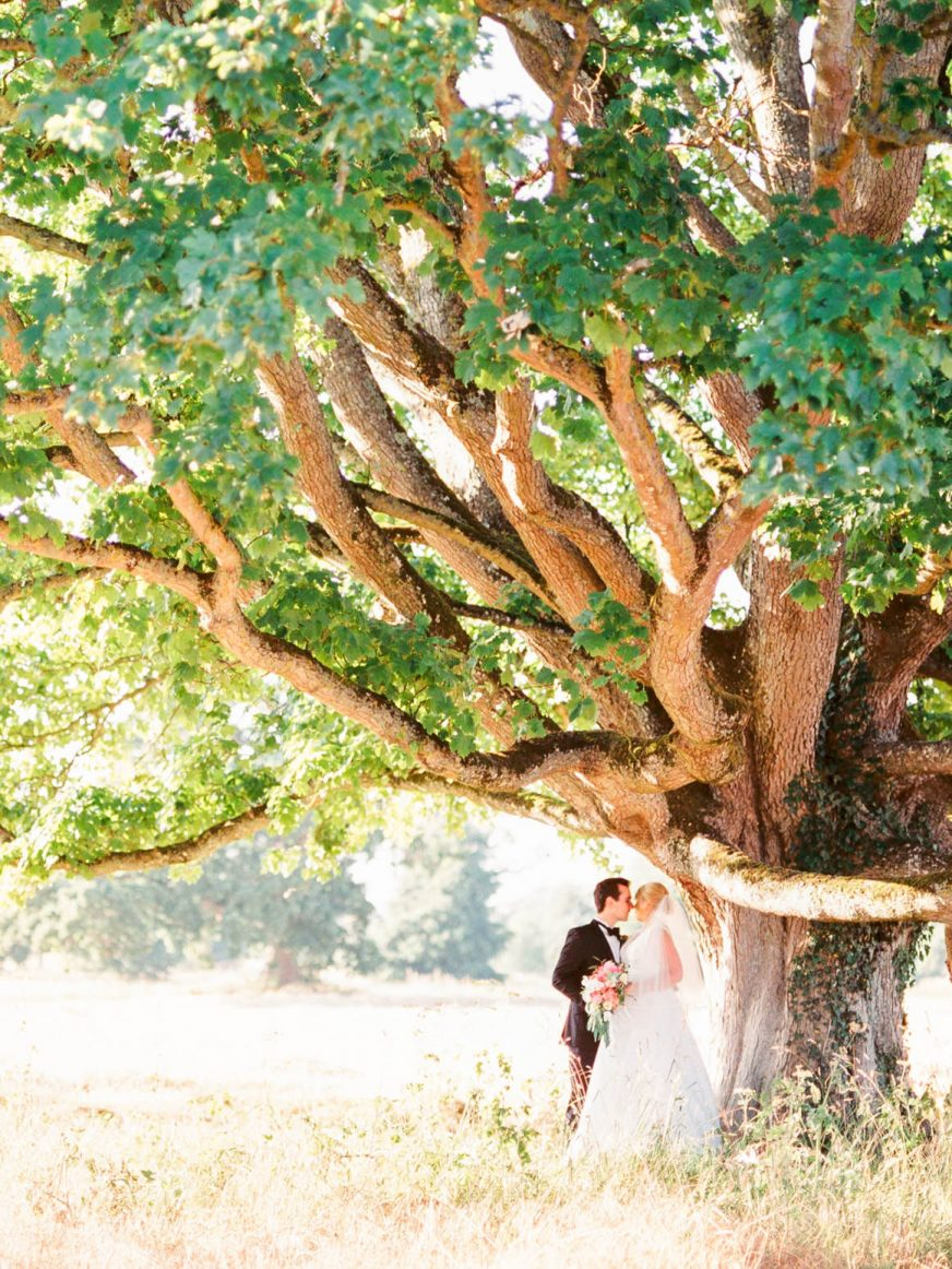 Ireland destination wedding photo under a tree in the Dublin countryside at Luttrellstown Castle. Photo used for Alex Schon Photography philosophy page